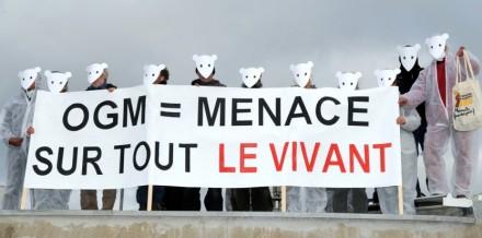 anti-ogm-sur-un-site-de-monsanto