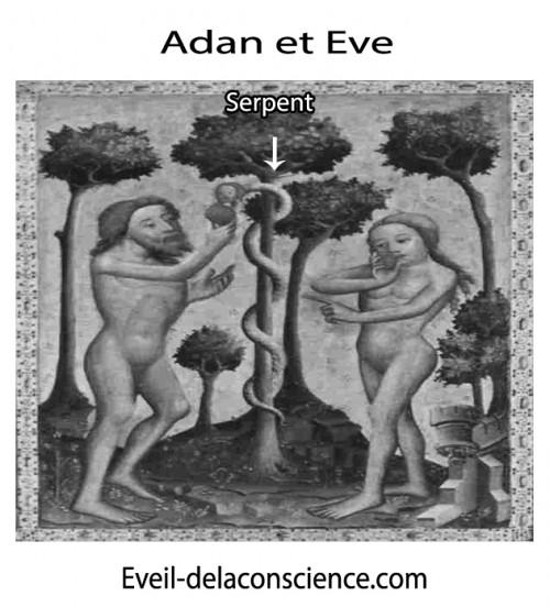 Adan et eve - Le serpent -